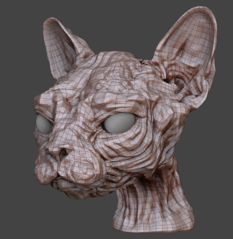ZBrush mesh with displacement enabled.